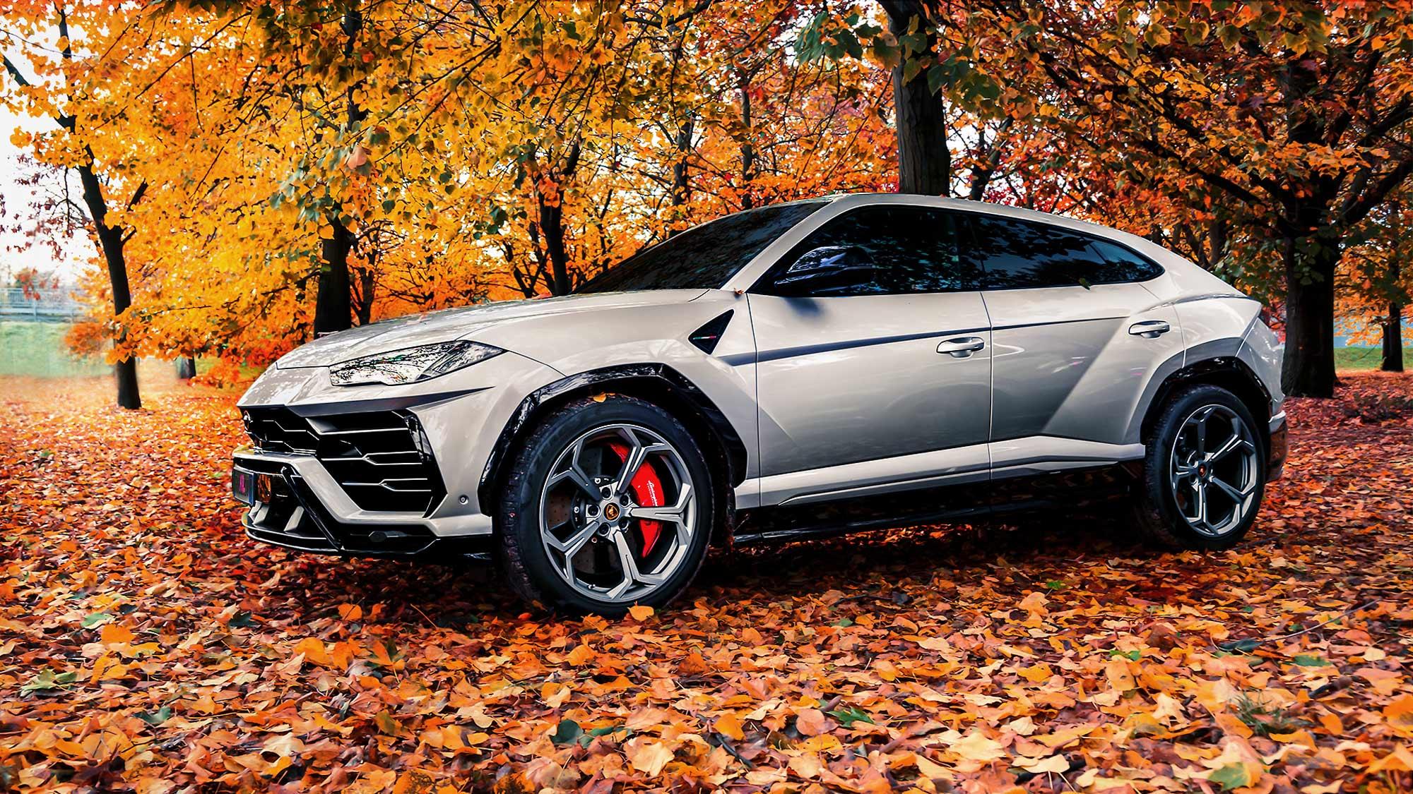 Lamborghini Urus im Wald